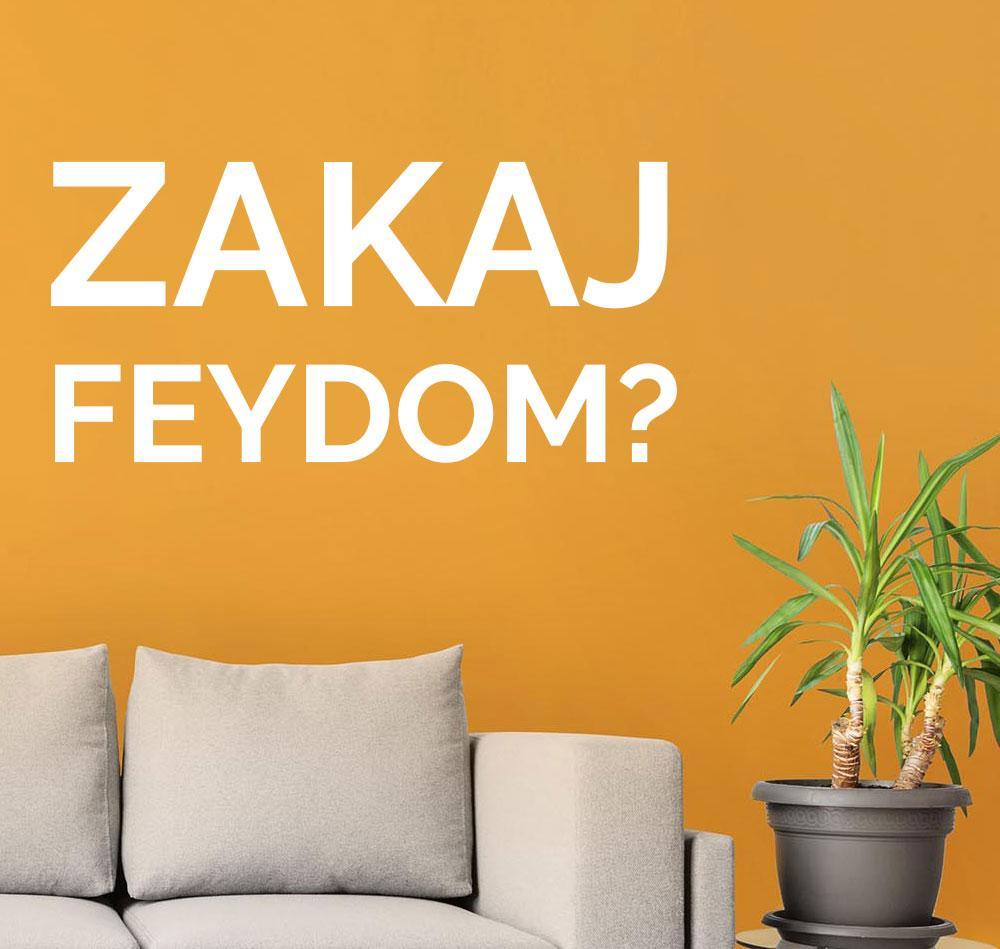 Zašto FEYDOM